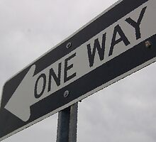 One Way by SierraHaynes97