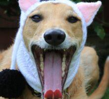 Funny Dog Wearing Cat Hat Sticker