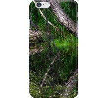 Pond Reflections of Peace and Serenity iPhone Case/Skin