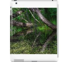 Pond Reflections of Peace and Serenity iPad Case/Skin