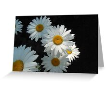Daisies in the Dark Greeting Card