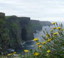 Cliffs of Moher - flowers Sticker
