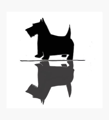 Artsy Funky Scottish Terrier Reflection Art Photographic Print