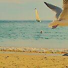 Moment fugace à Portez Beach by Jean-Luc Rollier