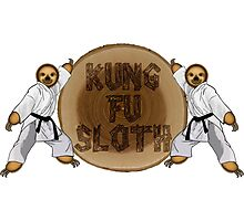 Kung Fu Sloth! Photographic Print