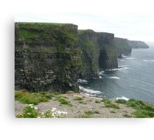 Cliffs of Moher - beach and flowers Canvas Print