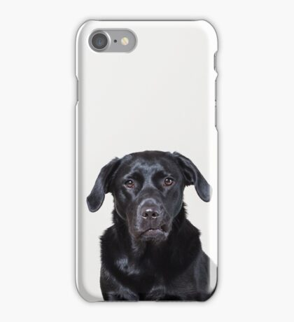 Black labrador funny face! iPhone Case/Skin
