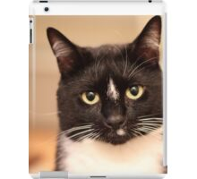 Sammy's Soul iPad Case/Skin