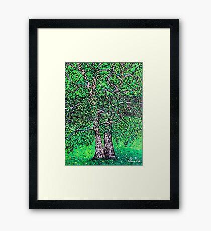 'Elm Trees' (Plein Air Painting) Framed Print