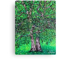 'Elm Trees' (Plein Air Painting) Canvas Print