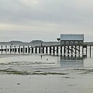 piers end by Bruce  Dickson