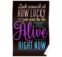 Hamilton Musical Quote. Colourful. Poster