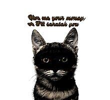 Cat robber Photographic Print