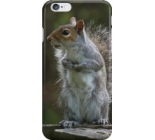 Morning Lookout iPhone Case/Skin