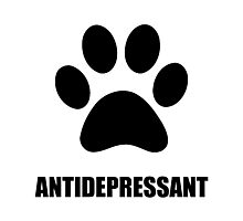 Antidepressant Pet Photographic Print