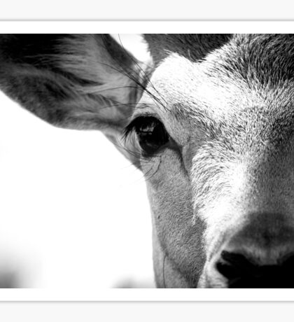 monochrome deer  Sticker