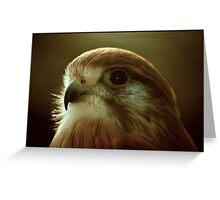 Are you looking at me? Greeting Card