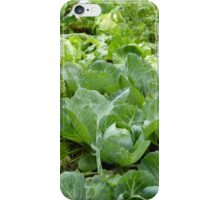A Slight Crop iPhone Case/Skin