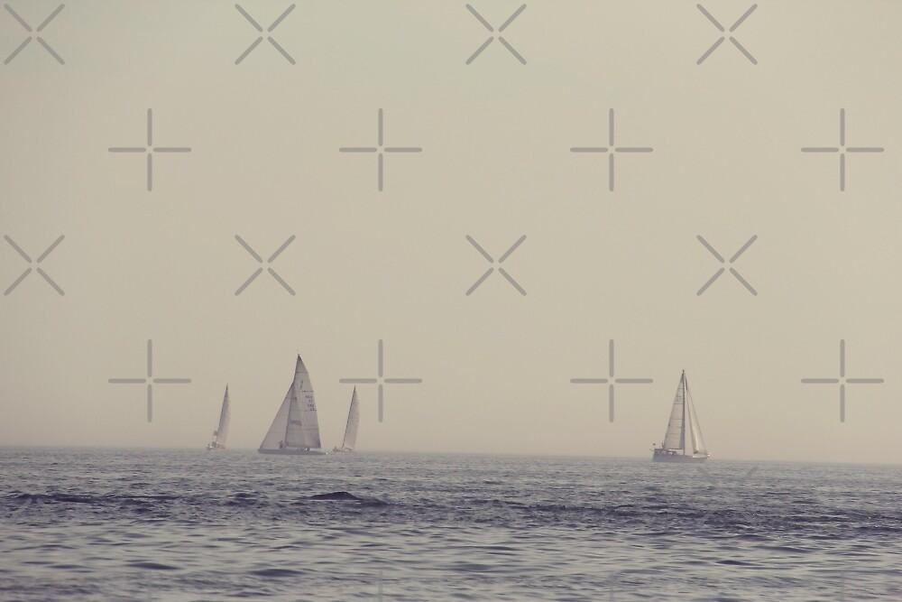 Sail Boats on Lake Ontario by Ruta Rudminaite