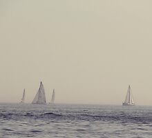 Sail Boats on Lake Ontario by Ruta Rudminaite