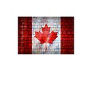 Canada flag painted on old brick wall texture background by E ROS