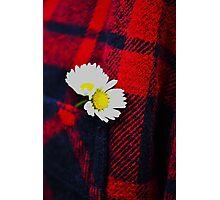 Checkered Daisy Photographic Print