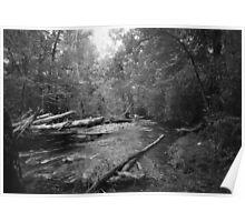 Oconaluftee River - Great Smokey Mountains Poster