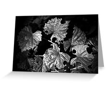 Leafcutters Greeting Card