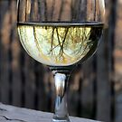 Reflections of Winter in a Glass of Wine by SummerJade