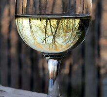 Reflecting Winter Shades of Brown ~ Wine by SummerJade