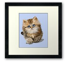 Adorable  Kitten   Framed Print