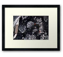 Lost In The Wilderness Of Darkness Framed Print