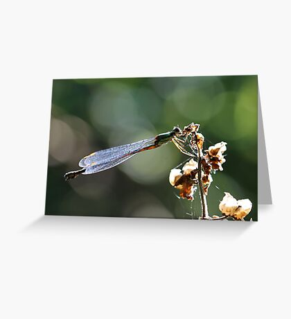 Emerald beauty Greeting Card