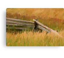 Bucolic Fence Canvas Print