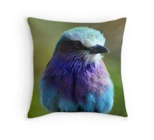 Pretty Little Bird 2 (Lilac Fronted Roller) Throw Pillow