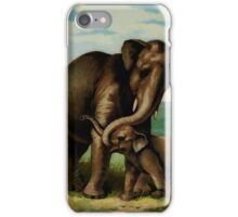 Vintage elephant cow with her calf iPhone Case/Skin