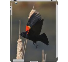 Red-Winged Blackbird Flight iPad Case/Skin