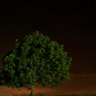 The loneliness of night by missmoneypenny