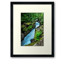 Avalanche Creek -- Glacier National Park Framed Print