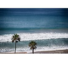 twin palms at the beach Photographic Print