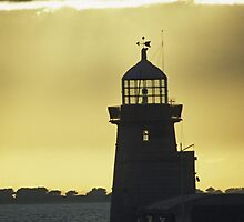 Lighthouse by Kasia Nowak