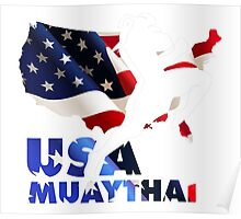 USA Muaythai Martial Art Poster