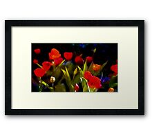 At Rest Among The Tulips Framed Print