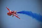 Red Arrow Singleton - Farnborough 2014 by Colin  Williams Photography