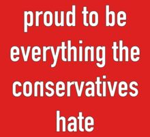 Proud To Be Everything The Conservatives Hate by Buleste
