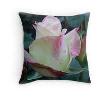 Athena Rosebud - one of the best, Oct. 2010 Throw Pillow