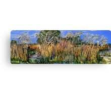 Hidden Life in the Swamp by Gidja Walker Canvas Print