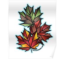 Maple Leaves for Fall Poster
