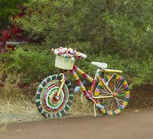 The Knitted Bike #2 by Elaine Teague