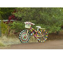 The Knitted Bike #2 Photographic Print